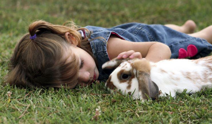 70b7000b966109 licg.nl - Welk huisdier past bij kinderen